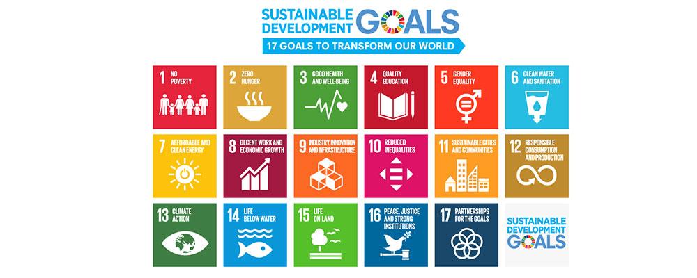 SDGsの各分野